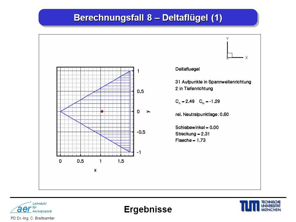 Berechnungsfall 8 – Deltaflügel (1)