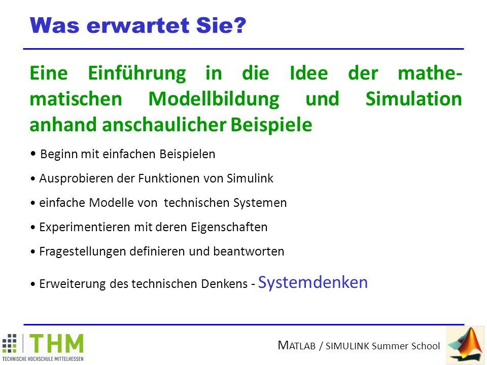 Was erwartet Sie Eine Einführung in die Idee der mathe-matischen Modellbildung und Simulation anhand anschaulicher Beispiele.