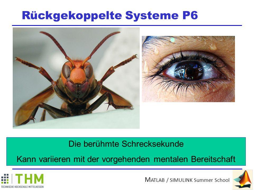 Rückgekoppelte Systeme P6
