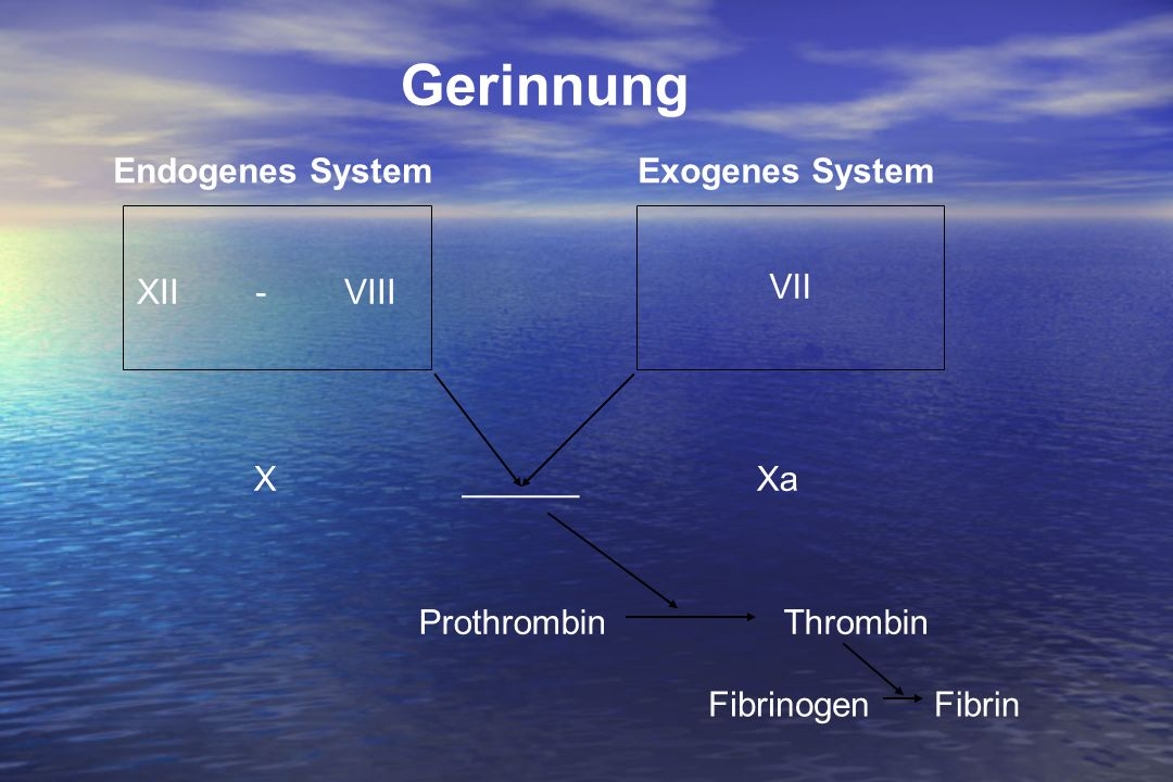 Gerinnung Endogenes System Exogenes System XII - VIII VII X ______ Xa