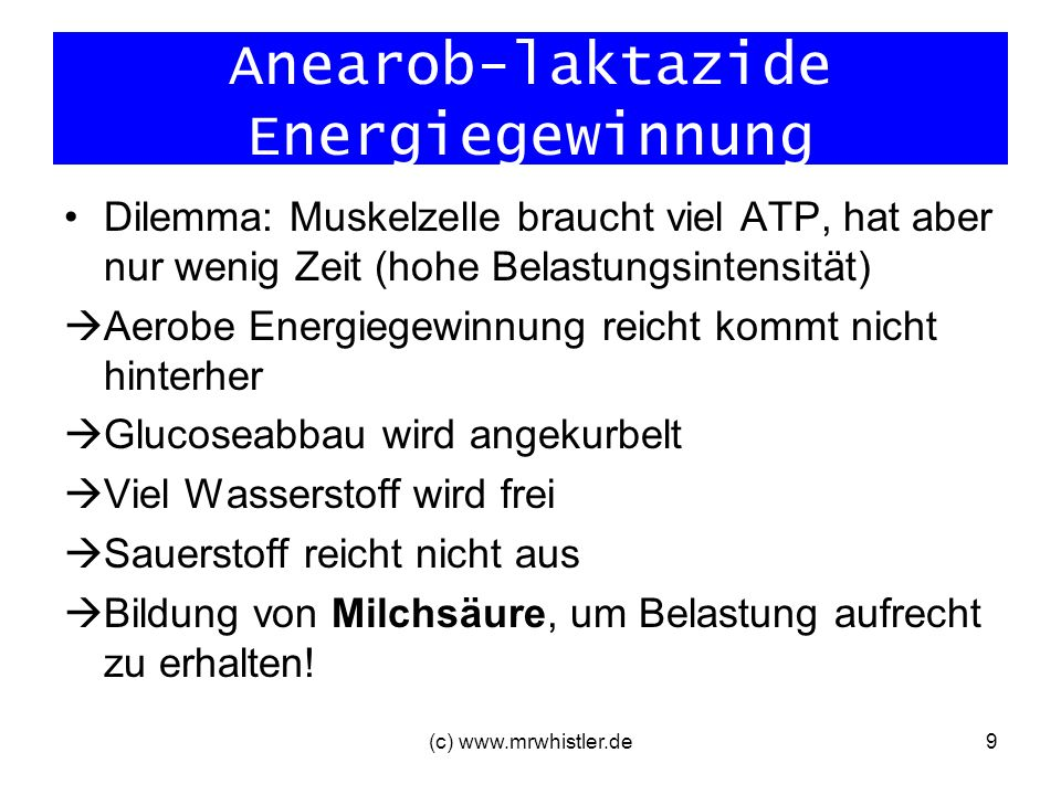 Anearob-laktazide Energiegewinnung
