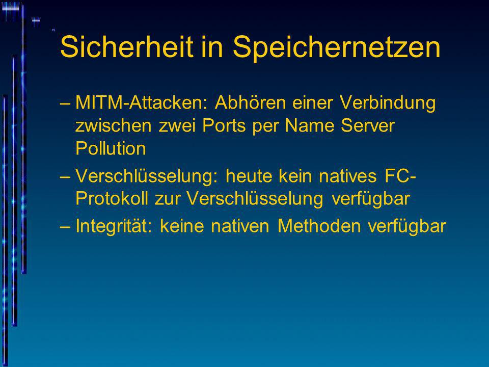 Sicherheit in Speichernetzen