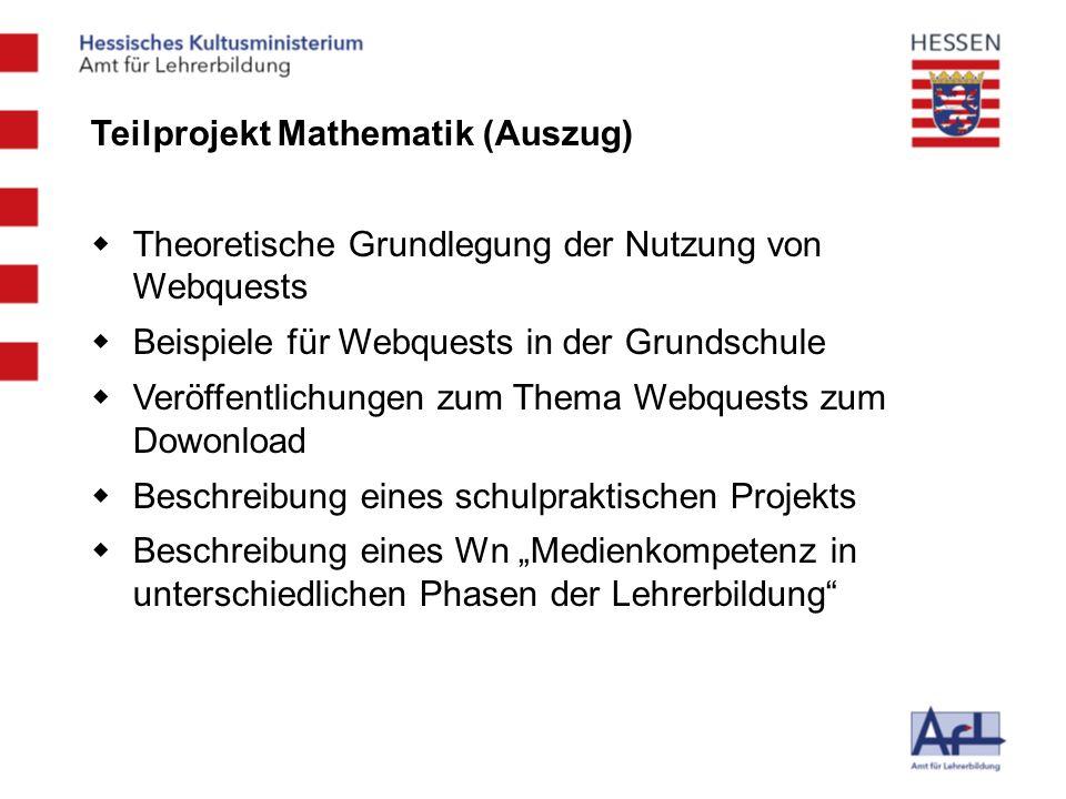 Teilprojekt Mathematik (Auszug)