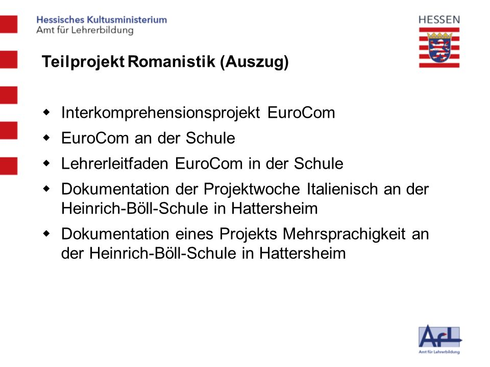 Teilprojekt Romanistik (Auszug)