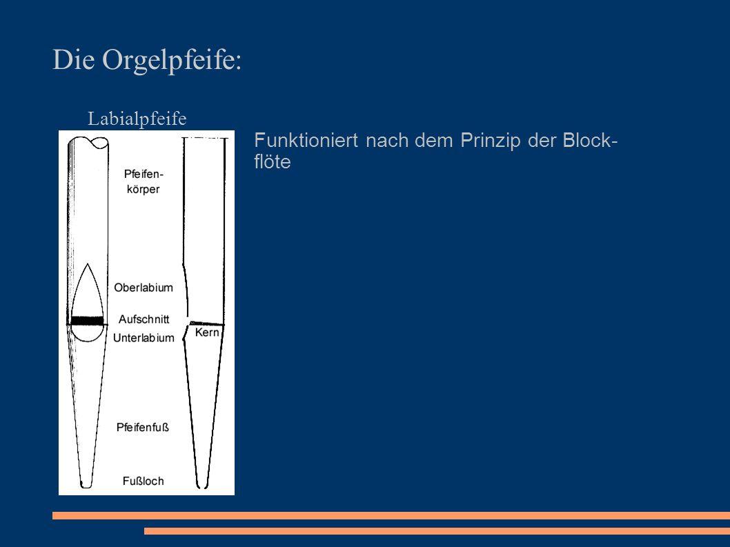 Die Orgelpfeife: Labialpfeife