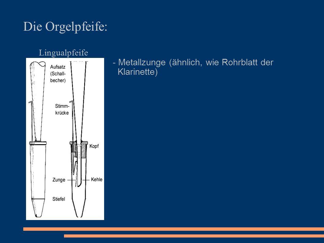 Die Orgelpfeife: Lingualpfeife