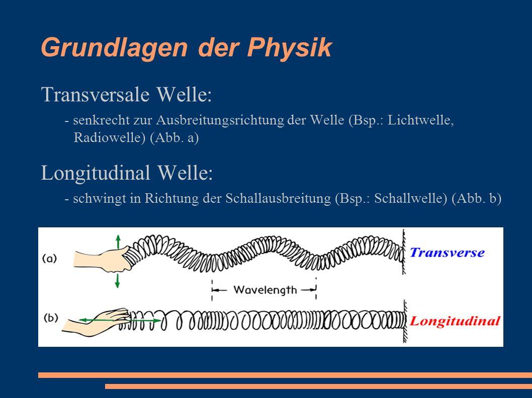 Grundlagen der Physik Transversale Welle: