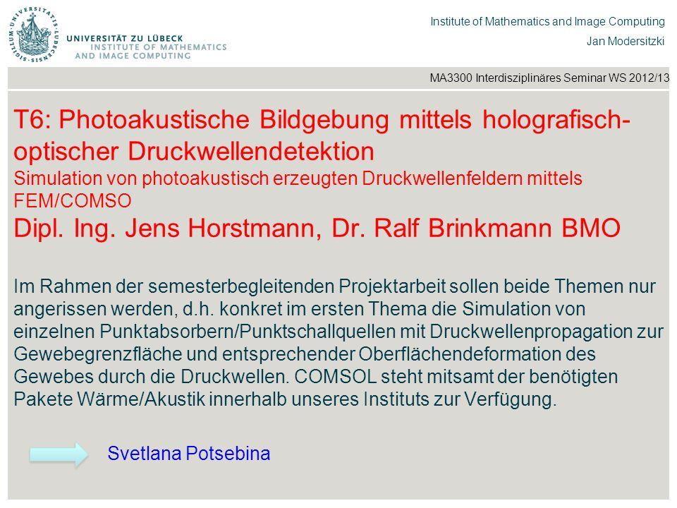 T6: Photoakustische Bildgebung mittels holografisch-optischer Druckwellendetektion Simulation von photoakustisch erzeugten Druckwellenfeldern mittels FEM/COMSO Dipl. Ing. Jens Horstmann, Dr. Ralf Brinkmann BMO