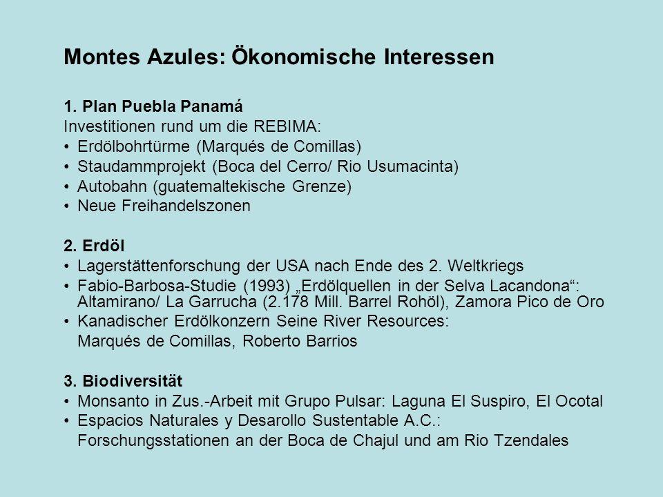 Montes Azules: Ökonomische Interessen