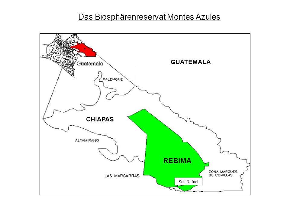 Das Biosphärenreservat Montes Azules