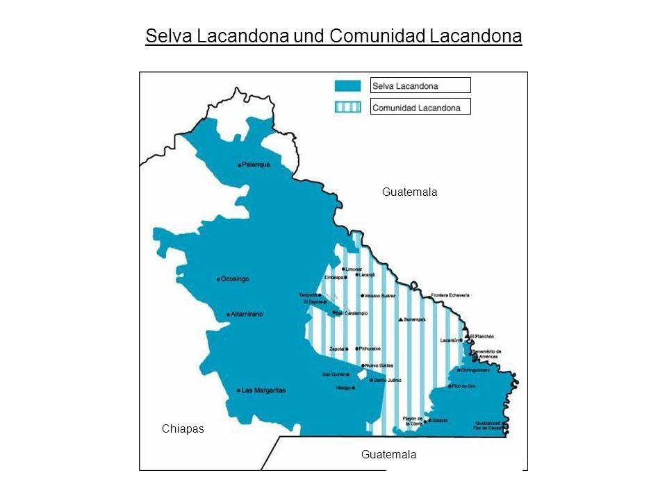 Selva Lacandona und Comunidad Lacandona
