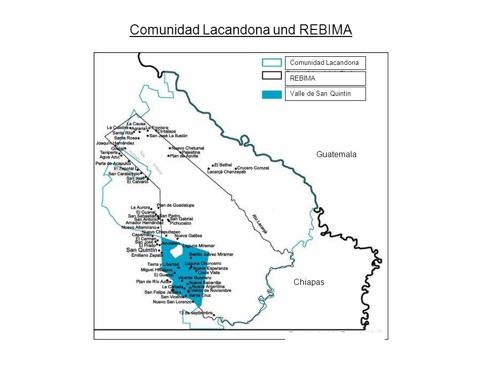 Comunidad Lacandona und REBIMA