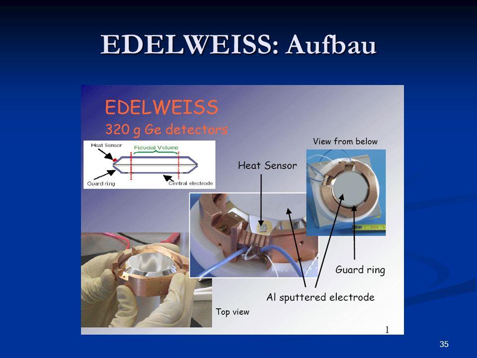 EDELWEISS: Aufbau 70 mm durchmesser ,20 mm hoch
