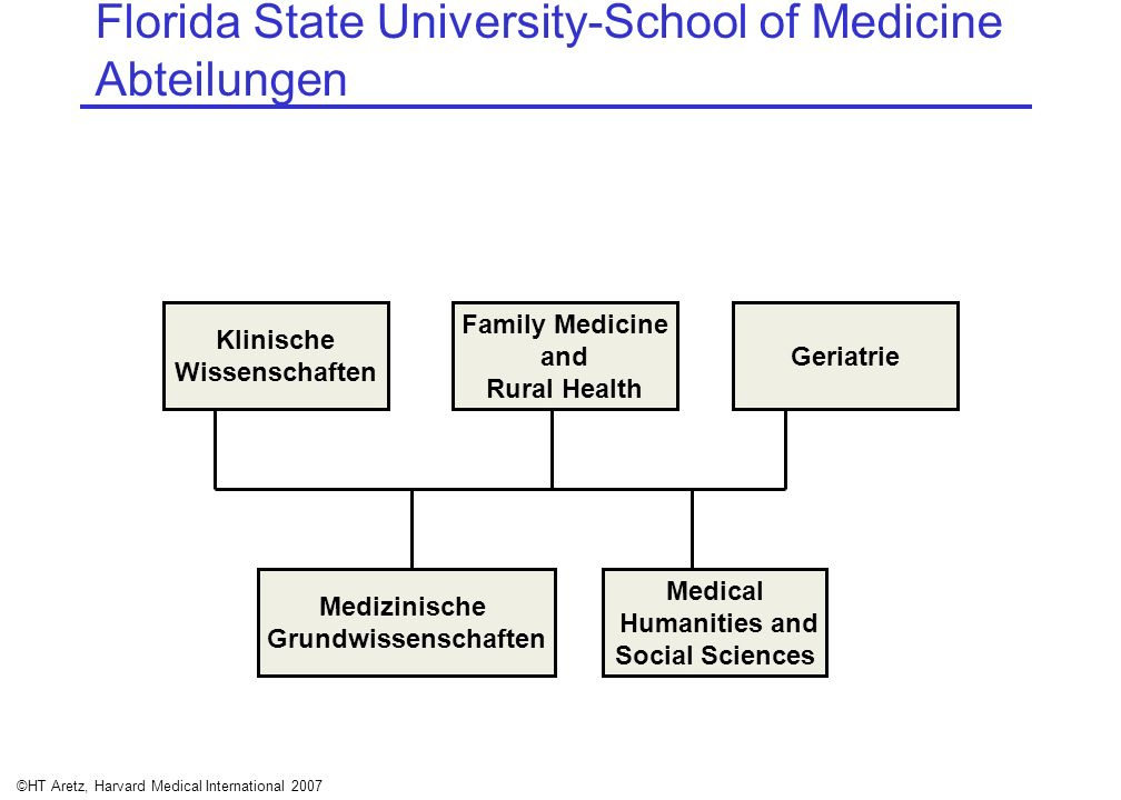 Florida State University-School of Medicine Abteilungen