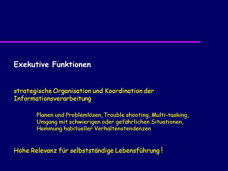Exekutive Funktionen strategische Organisation und Koordination der Informationsverarbeitung.