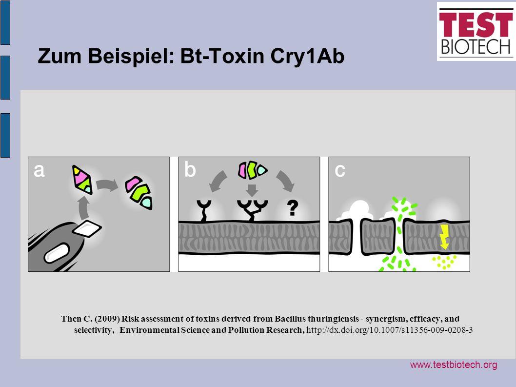 Zum Beispiel: Bt-Toxin Cry1Ab
