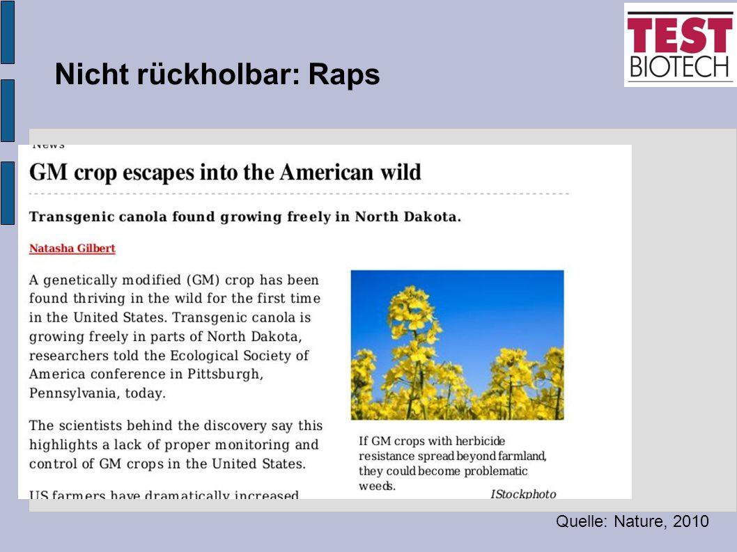 Nicht rückholbar: Raps