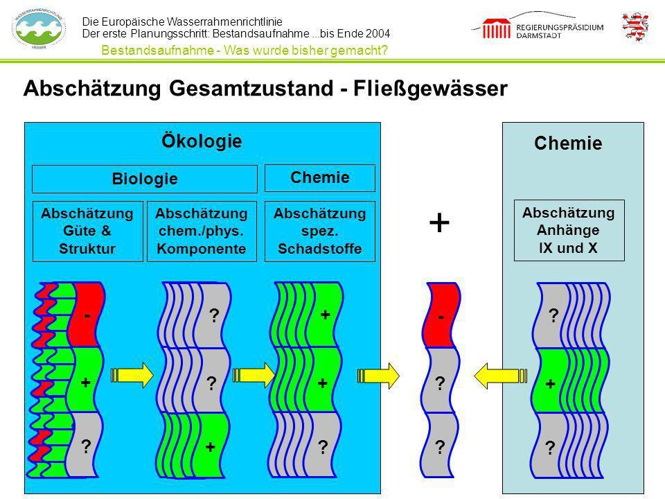 + Abschätzung Gesamtzustand - Fließgewässer Ökologie Chemie - + +