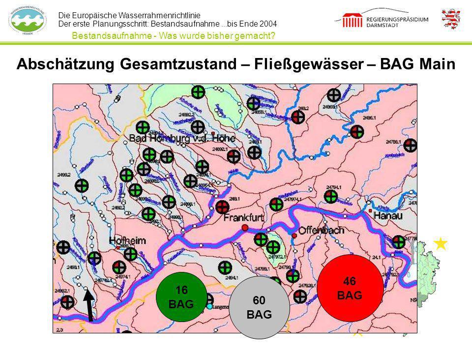 Abschätzung Gesamtzustand – Fließgewässer – BAG Main