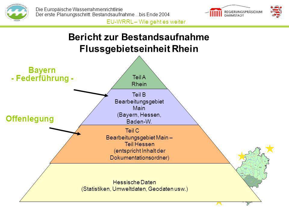 Bericht zur Bestandsaufnahme Flussgebietseinheit Rhein