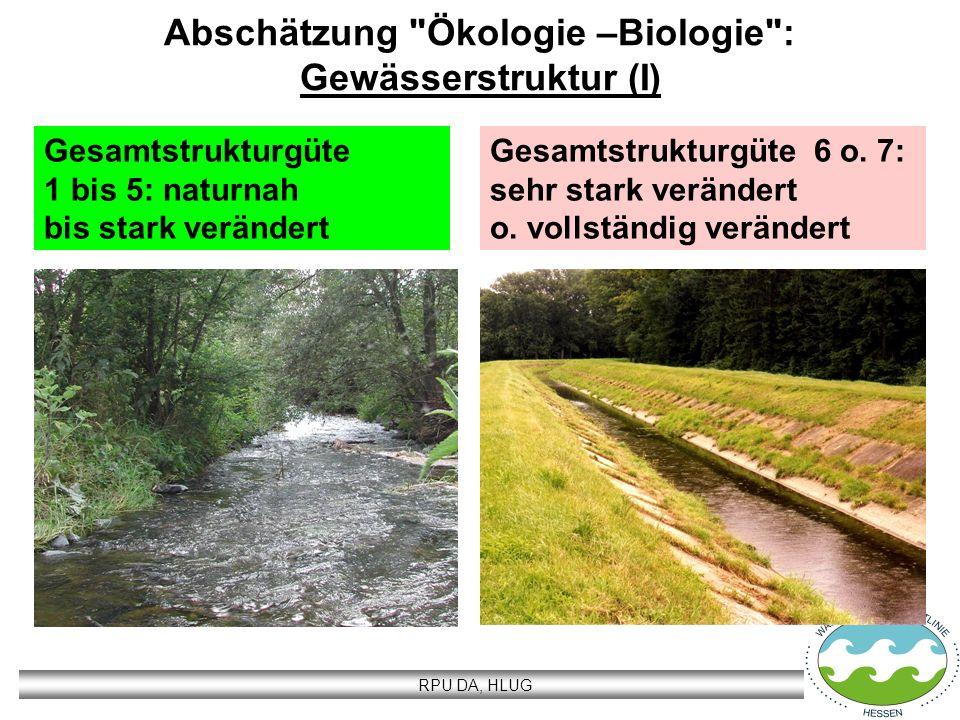 Abschätzung Ökologie –Biologie : Gewässerstruktur (I)