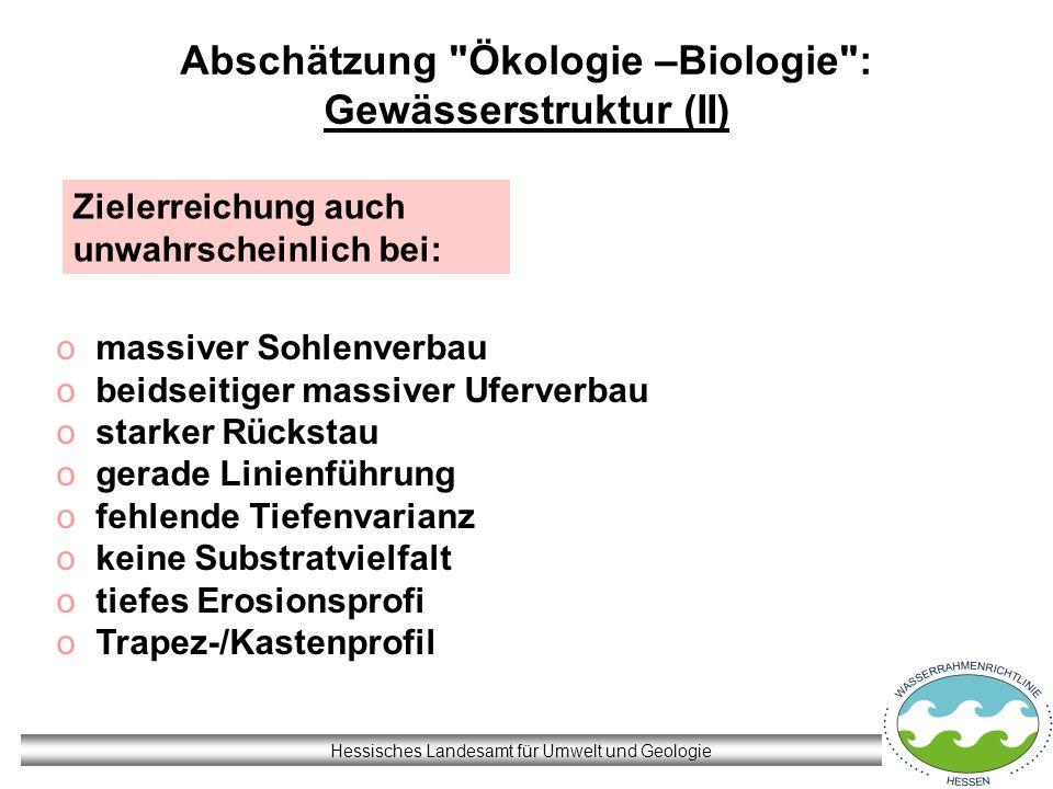 Abschätzung Ökologie –Biologie : Gewässerstruktur (II)