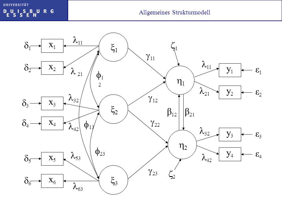 Allgemeines Strukturmodell