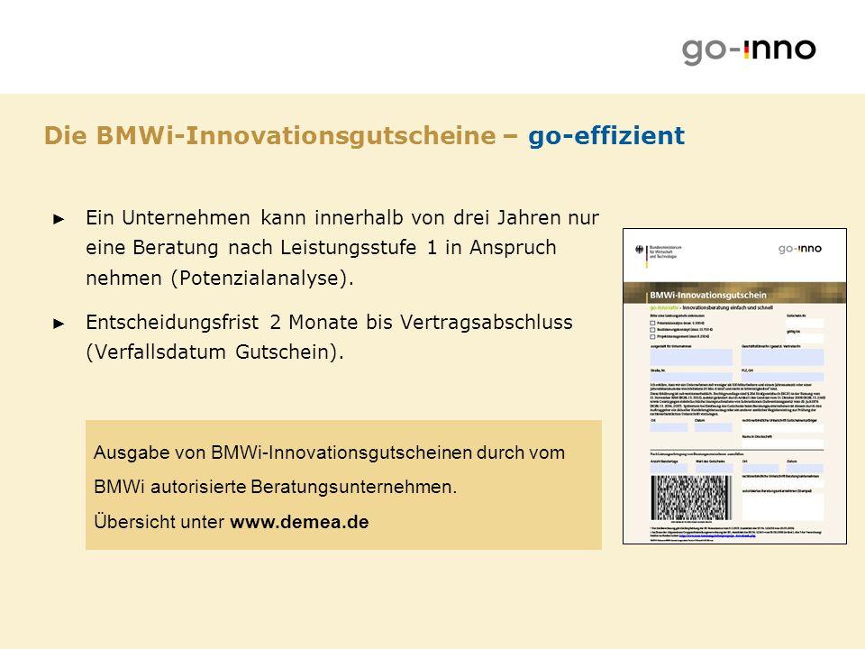 Die BMWi-Innovationsgutscheine – go-effizient