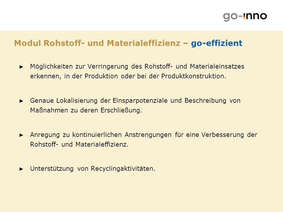 Modul Rohstoff- und Materialeffizienz – go-effizient