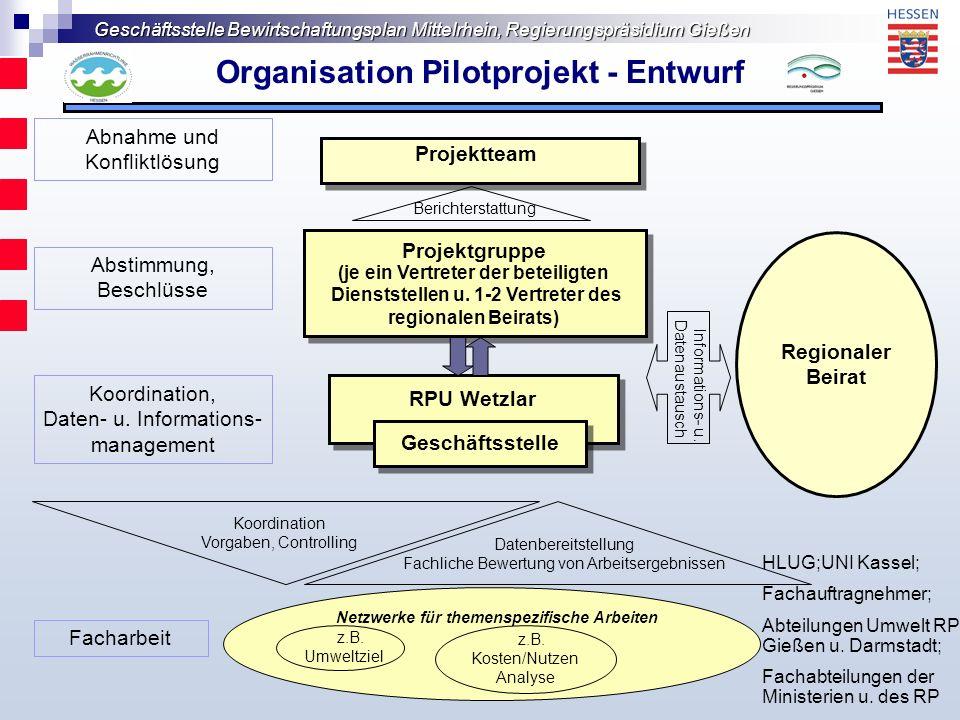 Organisation Pilotprojekt - Entwurf