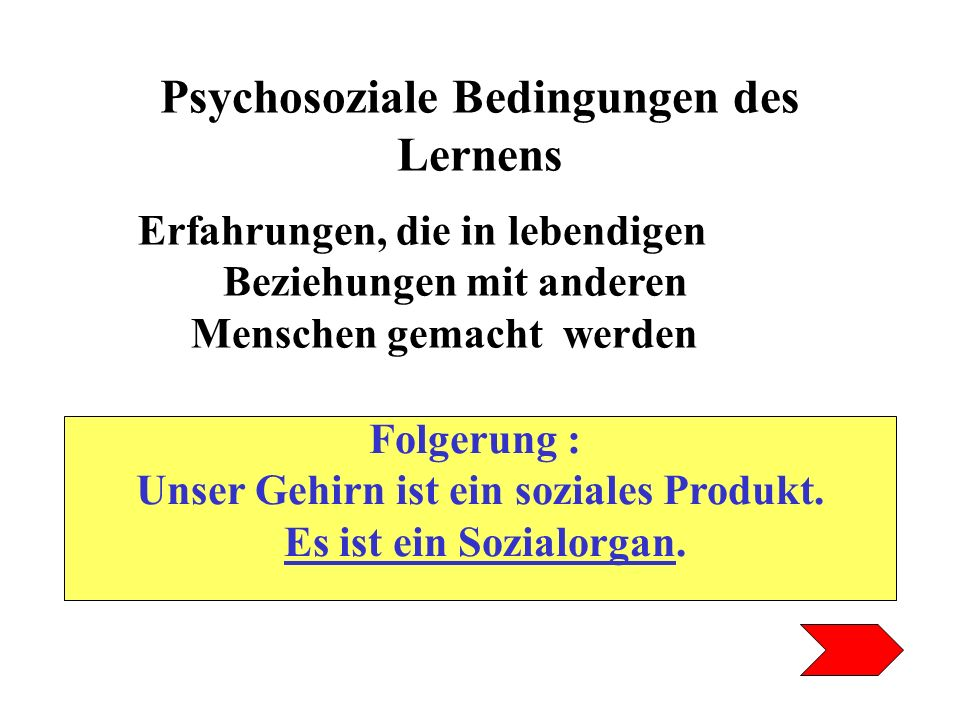 Psychosoziale Bedingungen des Lernens
