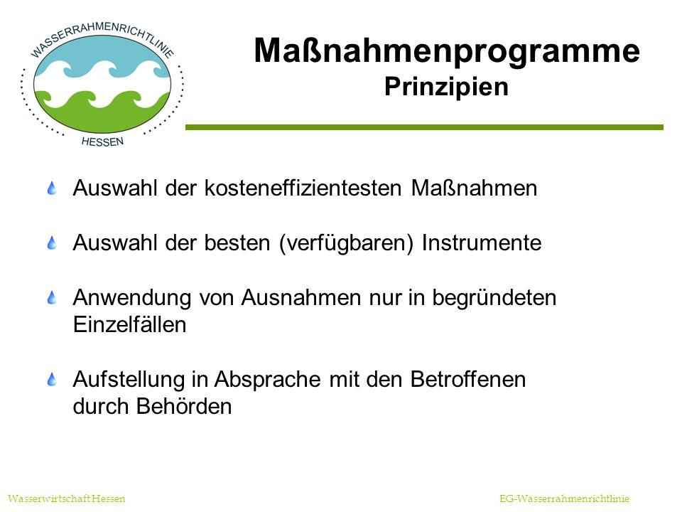 Maßnahmenprogramme Prinzipien