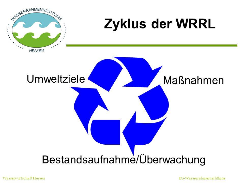 Zyklus der WRRL Umweltziele Maßnahmen Bestandsaufnahme/Überwachung