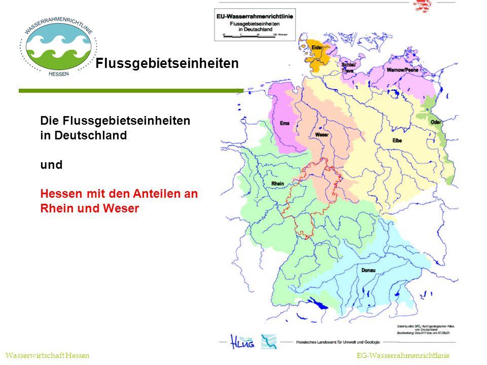 Flussgebietseinheiten