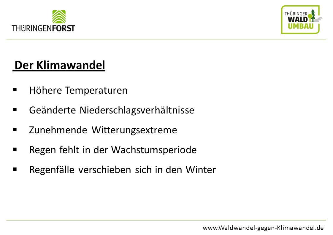 Geänderte Niederschlagsverhältnisse Zunehmende Witterungsextreme