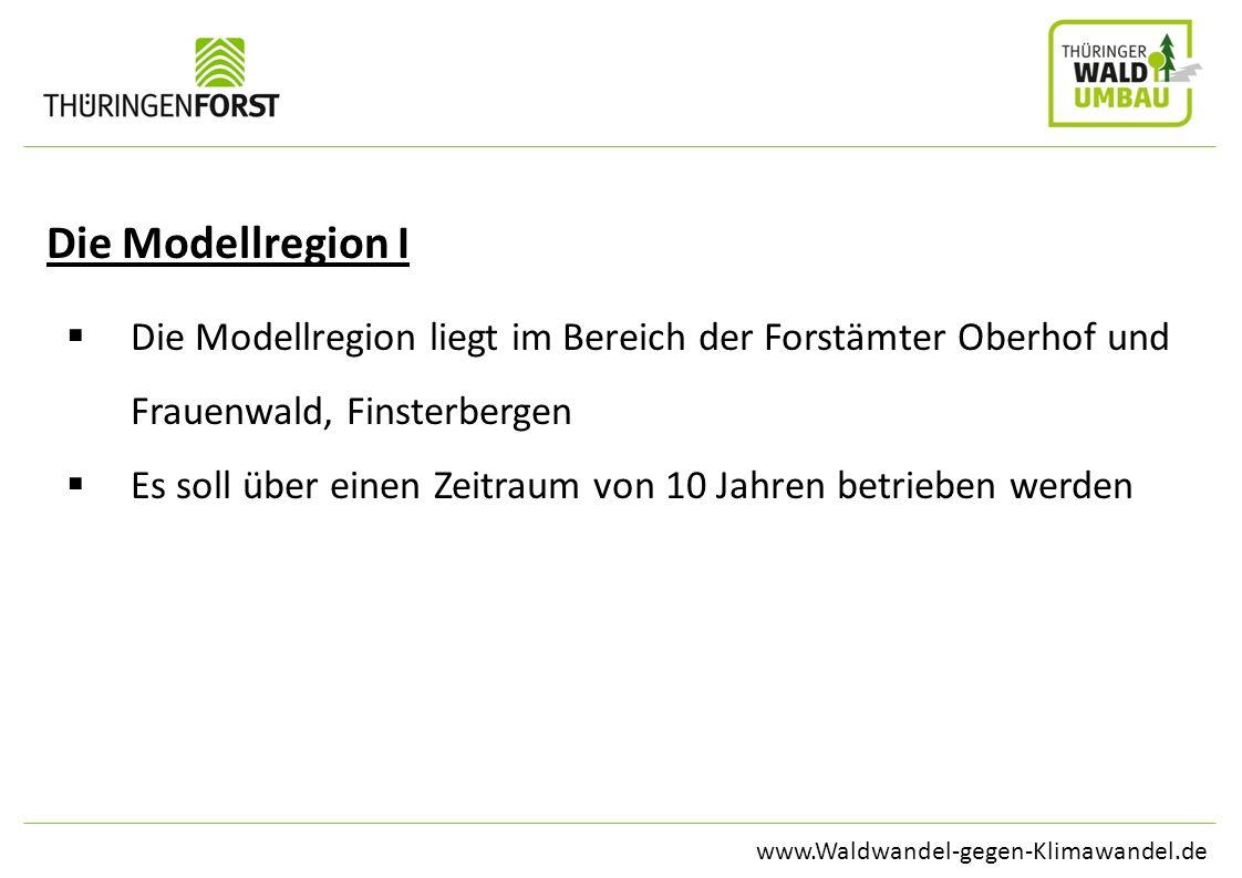 Die Modellregion I Die Modellregion liegt im Bereich der Forstämter Oberhof und Frauenwald, Finsterbergen.