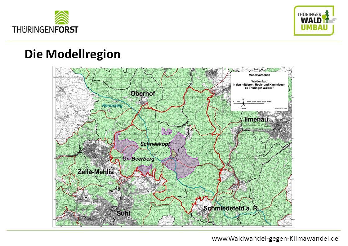 Die Modellregion