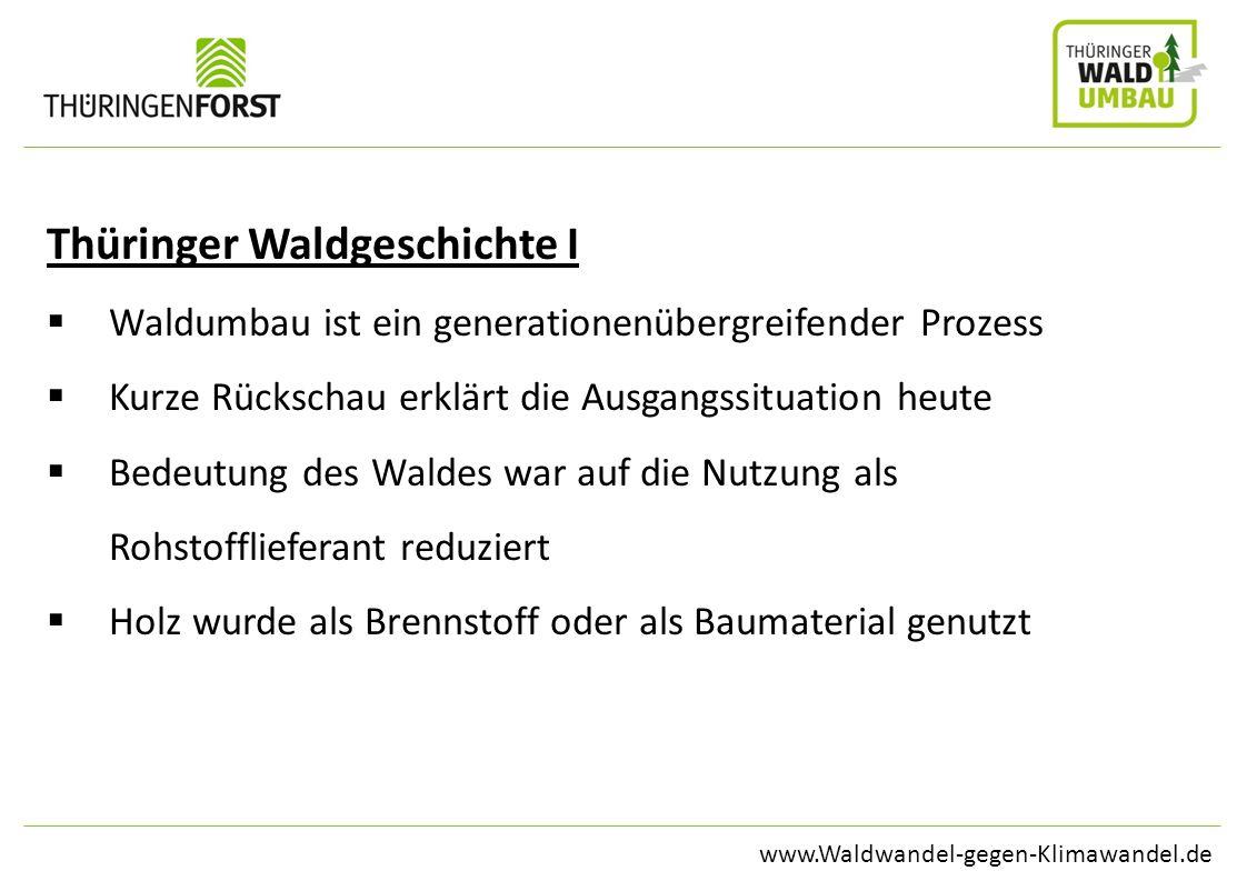 Thüringer Waldgeschichte I