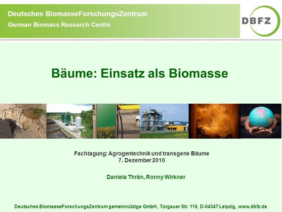 Bäume: Einsatz als Biomasse