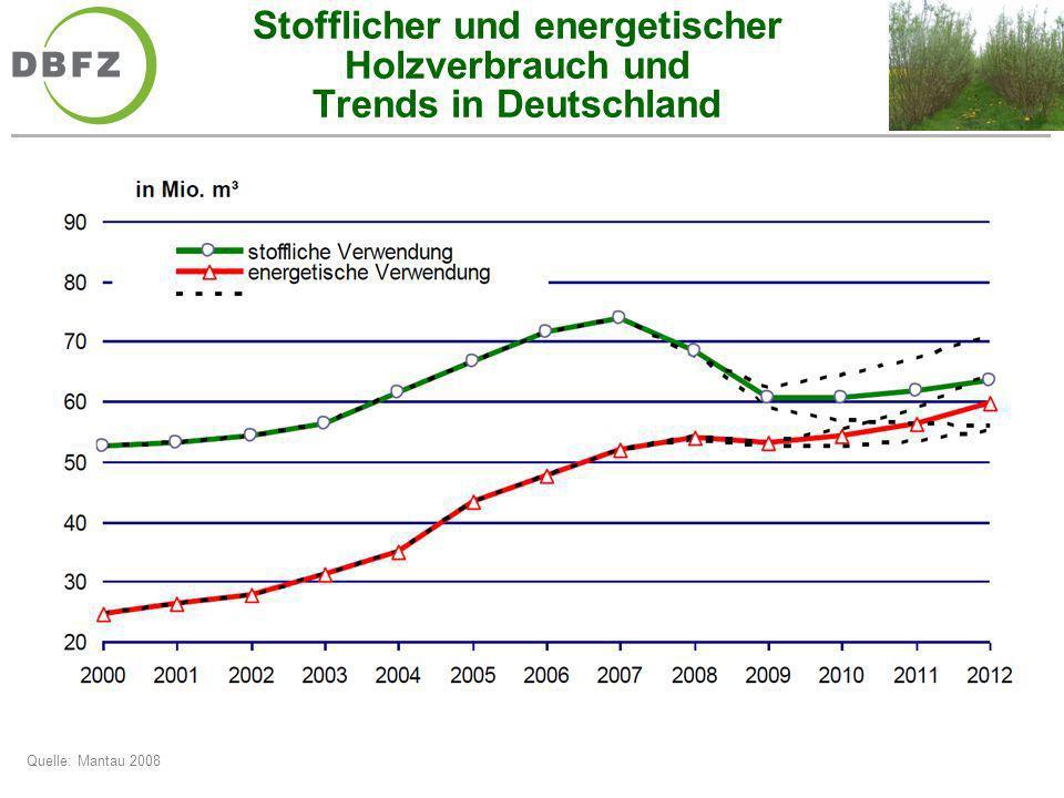 Stofflicher und energetischer Holzverbrauch und Trends in Deutschland