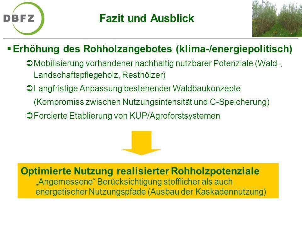 Fazit und Ausblick Erhöhung des Rohholzangebotes (klima-/energiepolitisch)