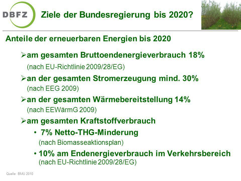 Ziele der Bundesregierung bis 2020