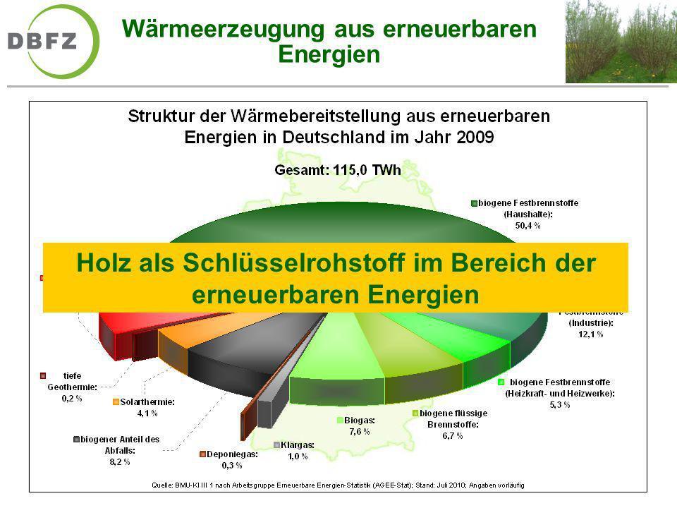 Wärmeerzeugung aus erneuerbaren Energien