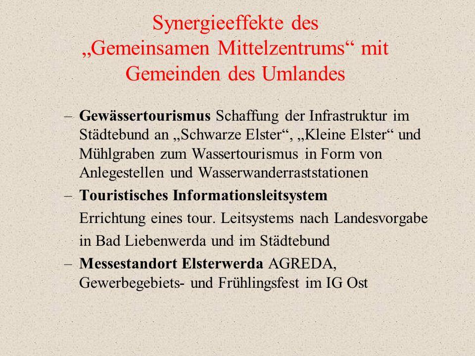 """Synergieeffekte des """"Gemeinsamen Mittelzentrums mit Gemeinden des Umlandes"""