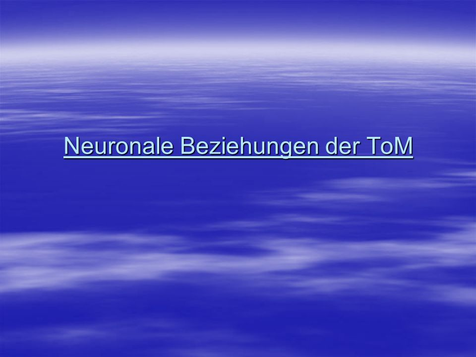 Neuronale Beziehungen der ToM