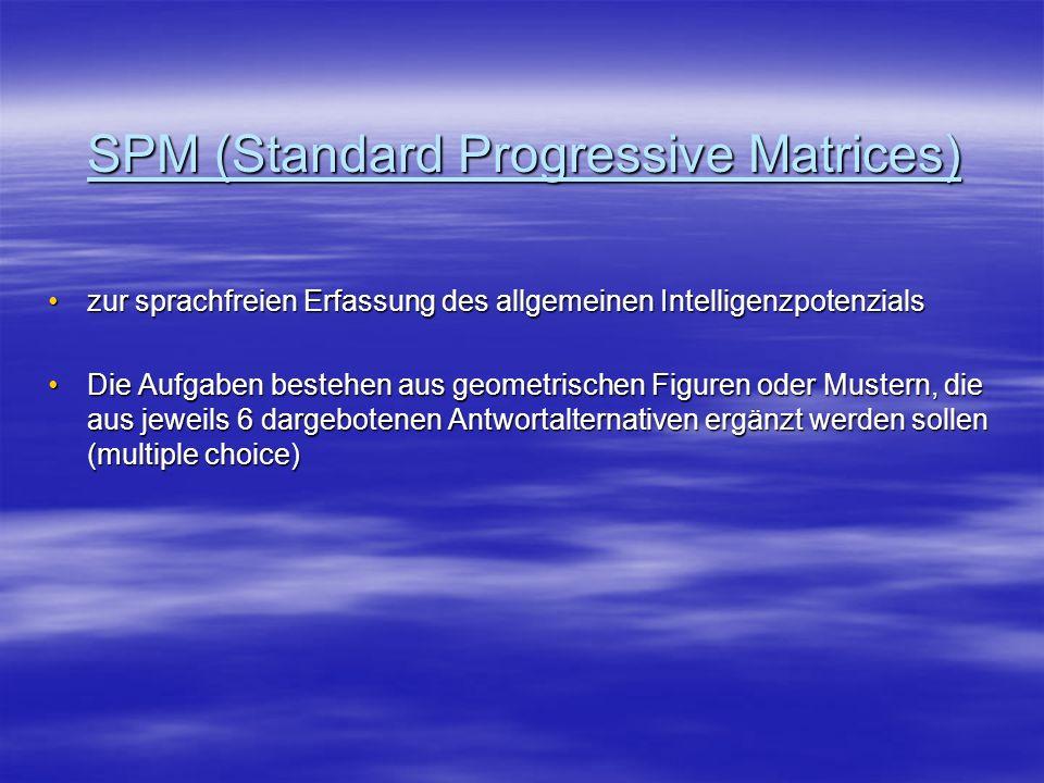 SPM (Standard Progressive Matrices)