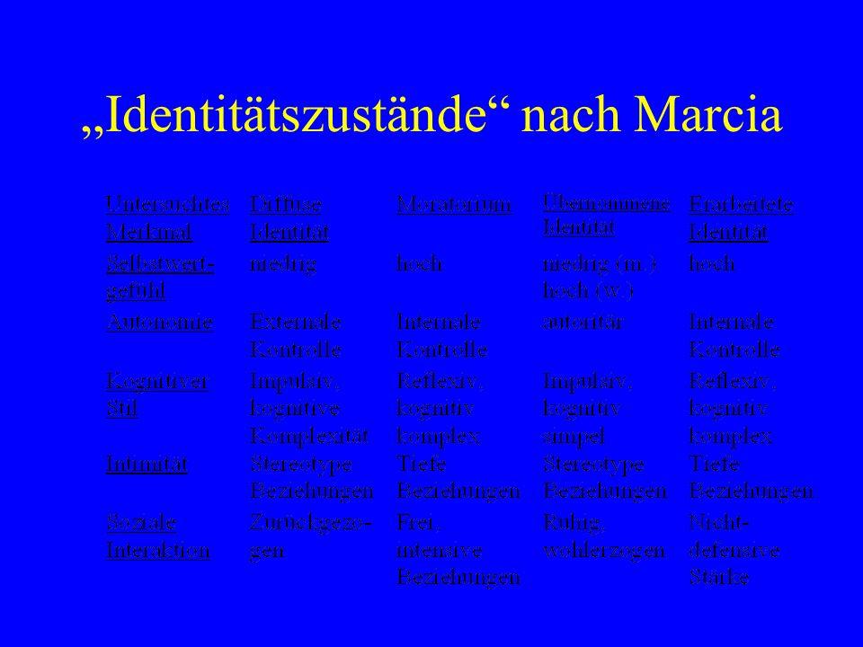 """""""Identitätszustände nach Marcia"""