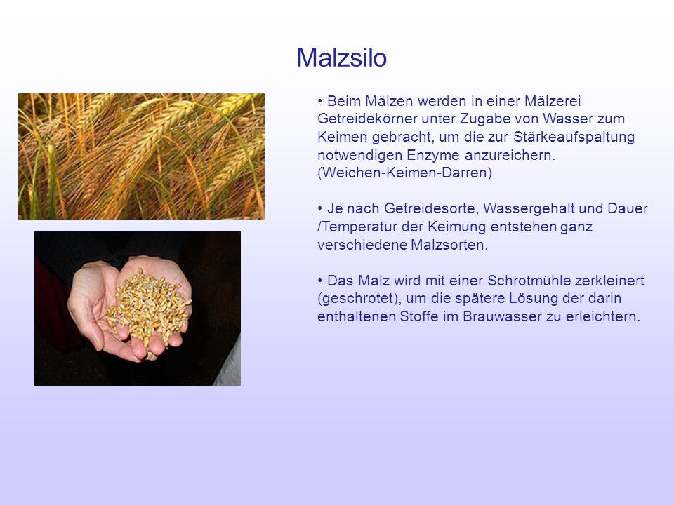 Malzsilo
