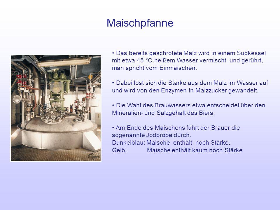Maischpfanne Das bereits geschrotete Malz wird in einem Sudkessel mit etwa 45 °C heißem Wasser vermischt und gerührt, man spricht vom Einmaischen.
