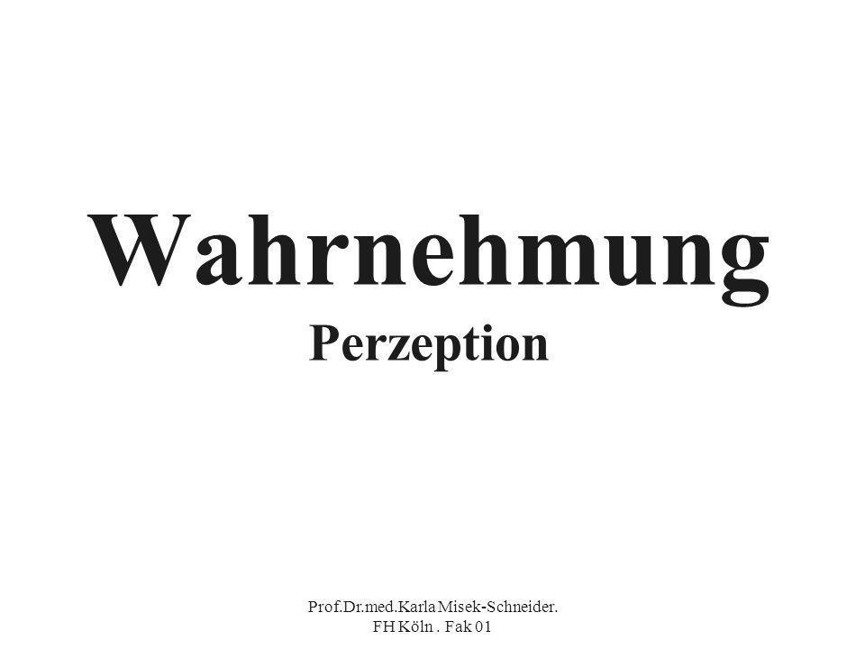 Wahrnehmung Perzeption
